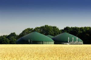 Biodujų jėgainės